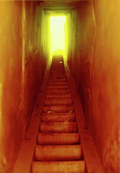 Elizabeth Hoskinson - Into The Light