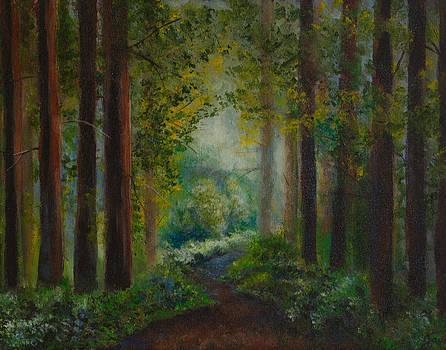 Into the Light by Jana Baker