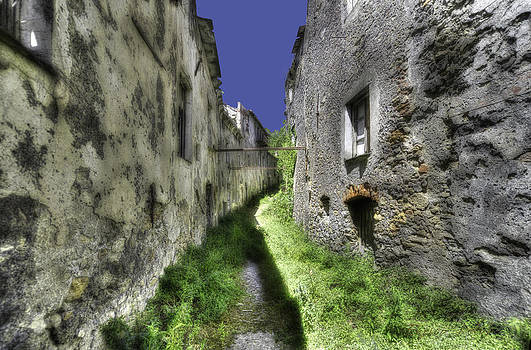 Enrico Pelos - INVASIVE VEGETATION IN THE MAIN STREET OF THE ABANDONED VILLAGE