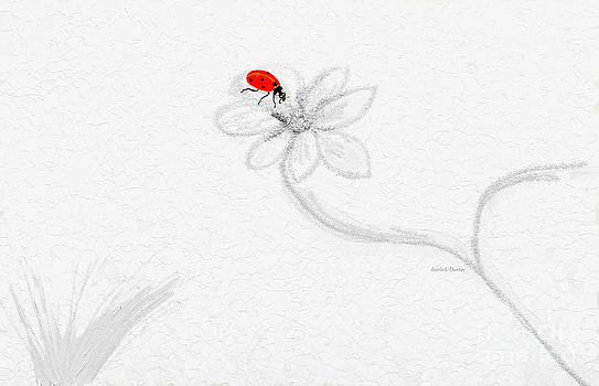 Invisible with ladybug by Angela A Stanton