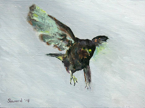 Io in Flight by Sarah Soward