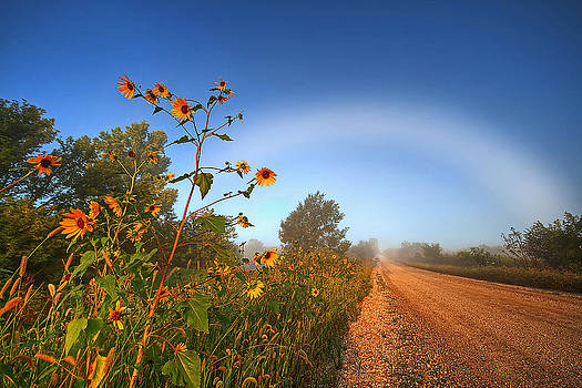 Iowa Fog Bow by Chris Allington