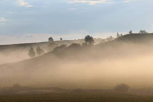 Iowa Morning by Angie Phillips