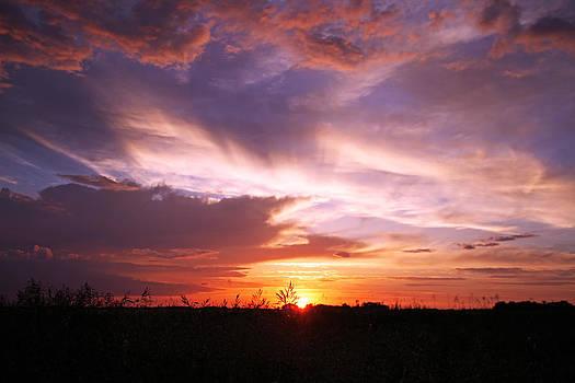 Iowa Sunset 1 by Steve  Yezek