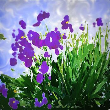 Iris by GuoJun Pan