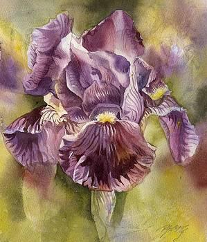 Alfred Ng - iris in purple