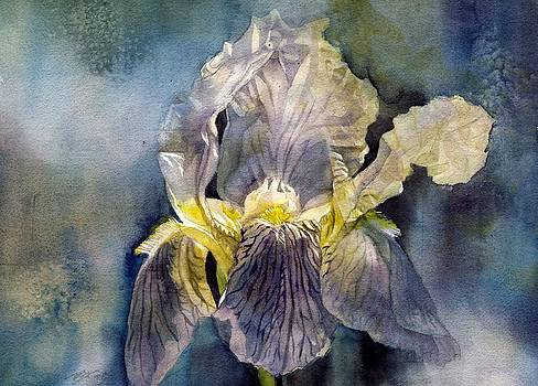 Alfred Ng - iris in the mist