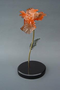 Iris by Leslie Dycke