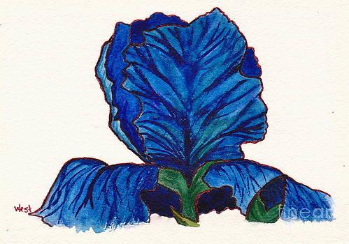 Iris by M West
