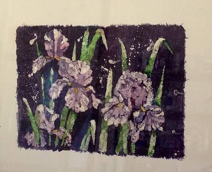 Iris by Martha Efurd