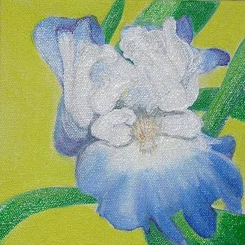 Iris by Melissa Torres
