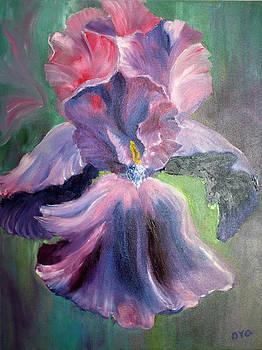 Iris by Olga Yug