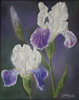 Iris Pair by Cynthia Snider
