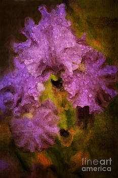 Iris Photograph Digital Painting by Heinz G Mielke