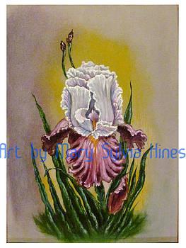 Iris Study v2 by Mary Sylvia Hines