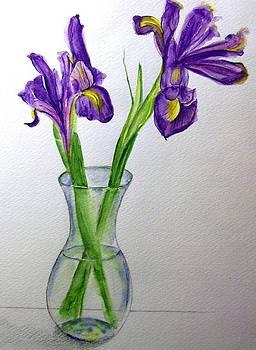 Shan Ungar - Irises for Grandma