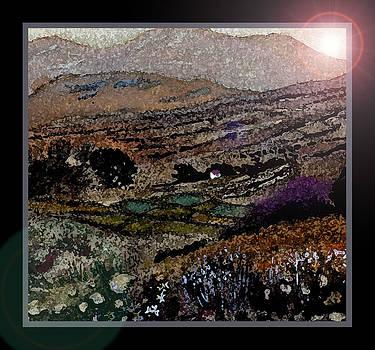 Irish Bog by Frank Gaffney