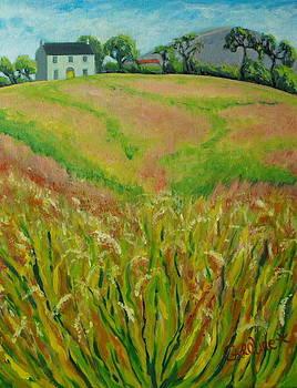 Irish Meadow by Caroline Cunningham