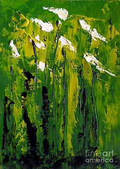 Fred Wilson - Iris