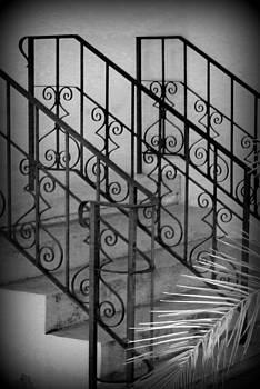 Karyn Robinson - Iron Railing Abstract