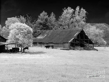 Irving College Barn by   Joe Beasley