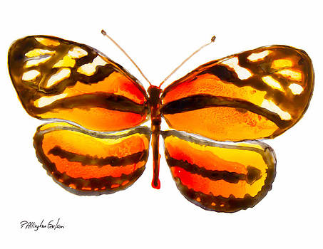 Isabella Butterfly by Patricia Allingham Carlson