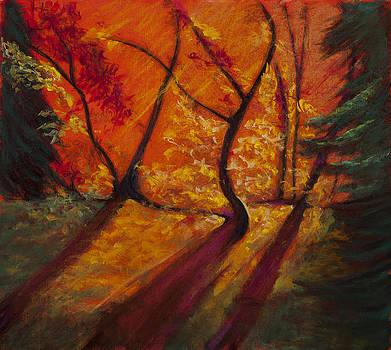 Isadreams by Jocelyn Paine