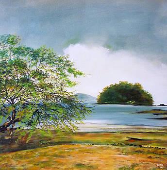Isla Venao by Ricardo Sanchez Beitia