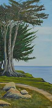 Isla Vista Bluffs by Jeffrey Campbell