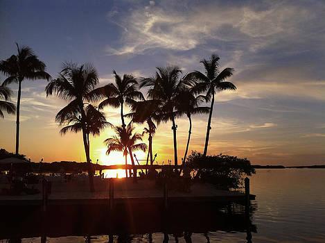 Islamorada Sunset by Tropigallery -