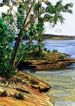 Island Coast by Donna Whitsitt
