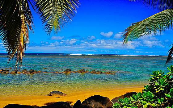 Island Getaway by Tracey McQuain