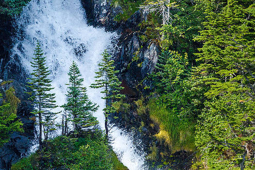 Island in the Cascade by Adam Pender