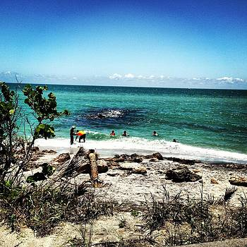 Island life 2 by Justine Prato