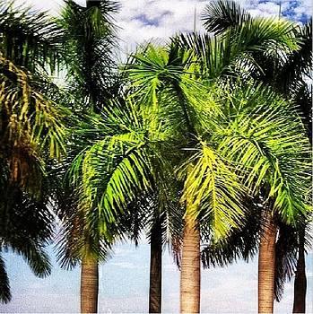 Island Life Tress by Wyn Charlery