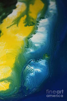 Lisa Payton - Island Sand Dunes