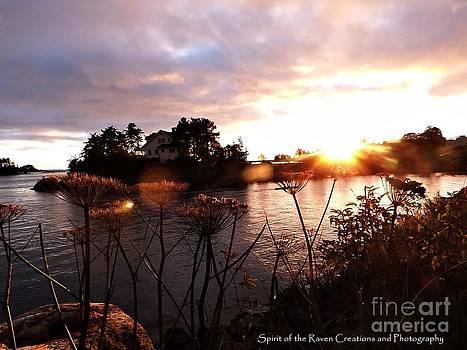 Island Set by Dawna Raven Sky