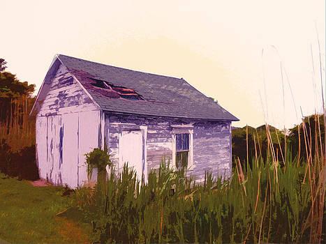 Island Shed by David Klaboe