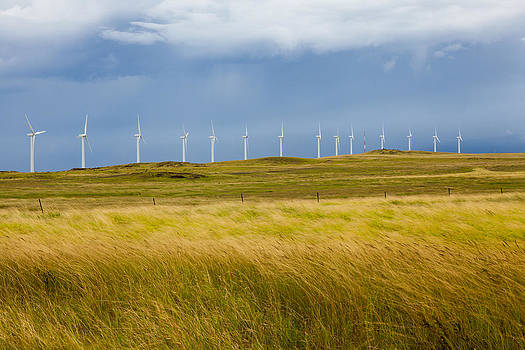 Island Turbines and Grass by Ed Cilley