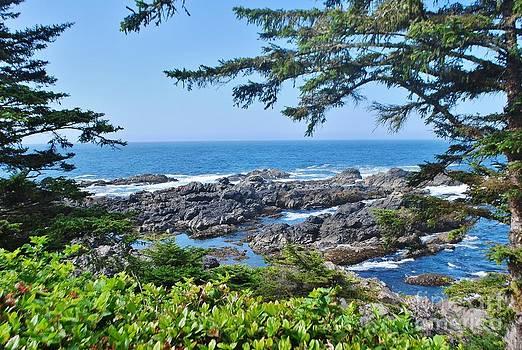 Island View by William Wyckoff