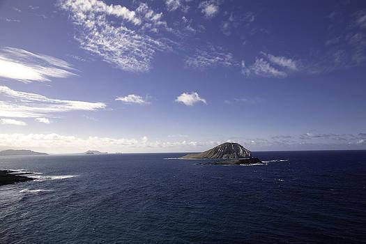 Islet by Joanna Madloch