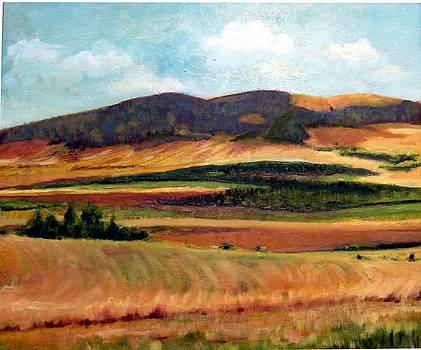 Israel Valley by Hannah Baruchi
