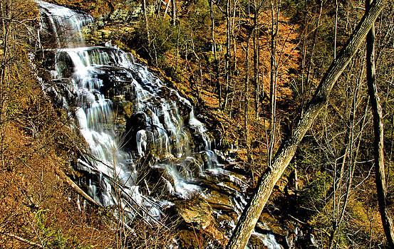 Matthew Winn - Issaqueena Falls in Late Autumn
