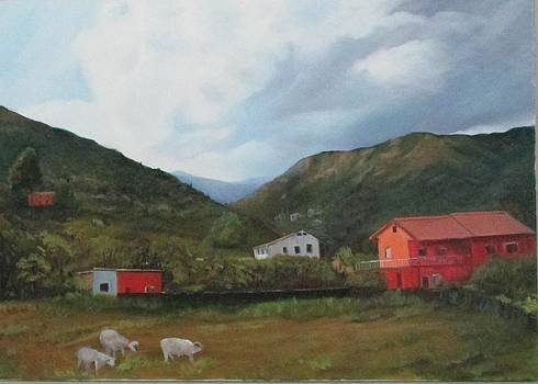 Italian Country Side by Betty Pimm