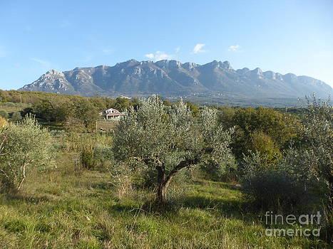 Italian Mountains by Adriana Joyce