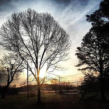 It's A Beautiful Morning! by Michelle Beattie-kacy
