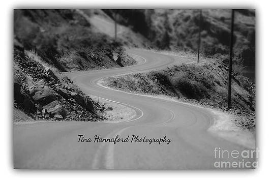 It's all about the curves by Tina Hannaford