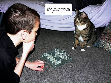 It's Your Move by Elizabeth S Zulauf
