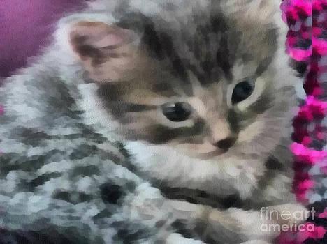Scott B Bennett - ity Bitty kitty