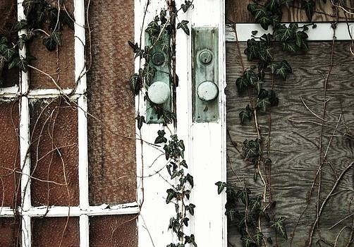 Robin Mahboeb - ivy doors